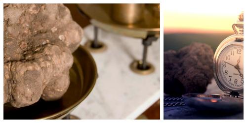 Dimensioni tartufo, marche, macerata, tartufi marche