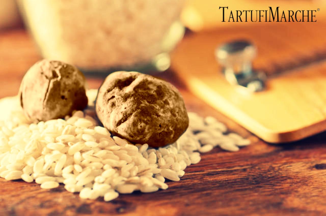 tartufo-bianco_1edd